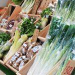 産直市場の魅力と愛知県のスポットを紹介!健康な食材選びのポイント!
