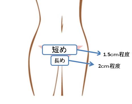 Vラインの上の方は短め、下の方は長めで徐々に長さを変えていく